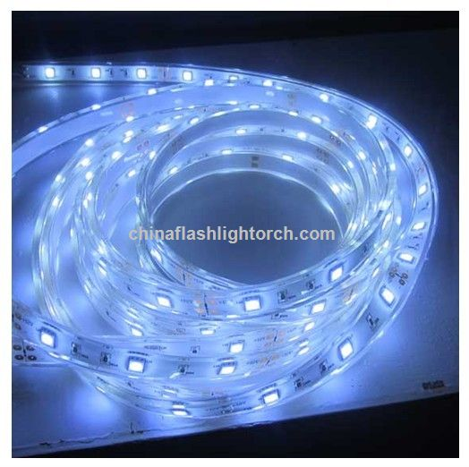 Industrial Bright 12V 3528 5050 SMD Warm White LED Rope Light Outdoor